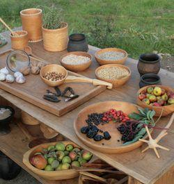 Timian, kvan og løgkarse – vikingernes vilde urter