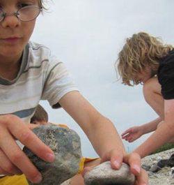 Steinkunde und Strandfunde